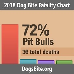 Nonprofit Releases 2018 Dog Bite Fatality Statistics and